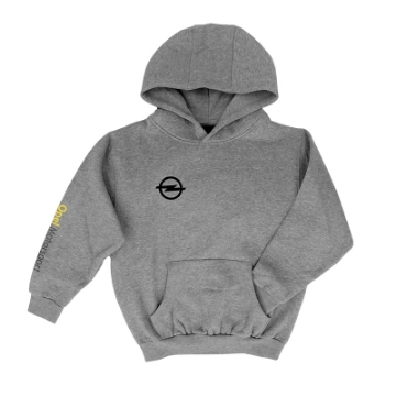 Picture of Motorsport hoodie for kids